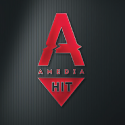 Amedia Hit